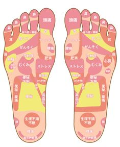 Massage Pressure Points, Muscle Training, Child Actresses, Japan Art, Cool Words, Body Care, Healthy Life, Health Care, Remedies