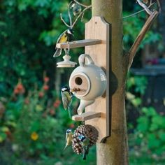44 Cute Teapot Birdhouse Ideas To Improve Your Outdoor Decor - Trendehouse Bird House Plans, Bird House Kits, Birdhouse Designs, Birdhouse Ideas, Unique Birdhouses, Teapot Birdhouse, Old Tea Pots, Cute Teapot, Bird Houses Diy