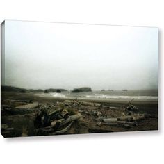 ArtWall Kevin Calkins Driftwood and Seastacks Gallery-Wrapped Canvas, Size: 24 x 36, Brown
