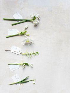 April Flowers | Flower arrangement + styling : dietlind wolf - Photos…
