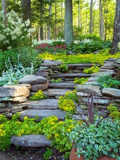 8 Competent Clever Tips: Backyard Garden House Chicken Coops backyard garden on a budget fire pits.Dream Backyard Garden Design backyard garden flowers how to grow.Backyard Garden Shed Colour. Hillside Garden, Garden Paths, Sloped Garden, Sloped Backyard, Large Backyard, Modern Backyard, Japanese Garden Landscape, Garden Pond, Garden Art