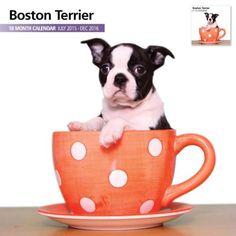 Boston-Terrier-2016-18-Month-Calendar