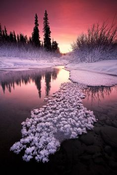 Alaska Winter sunset (Wall - instead of floating snow clumps, think flowers) Winter Szenen, Winter Sunset, Alaska Winter, Winter Colors, All Nature, Amazing Nature, Pretty Pictures, Cool Photos, Amazing Pictures