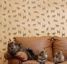 Cats, Cats, Cats Wall Stencil