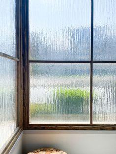 Garden Studio, Windows, Ramen, Window