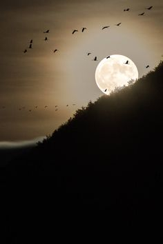 photo ... Moonrise, Mende, France, by Bastien Hajduk ... looks like a brayered scene ... would be good design for Halloween with a sentiment or eyes in lower right corner ...