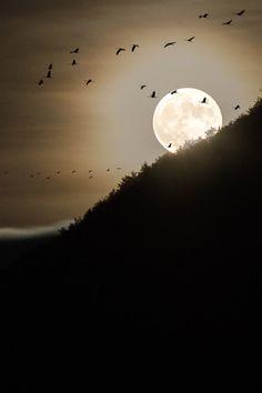 Moonrise | Bastien Hajduk Melancholy, Hope & Balance