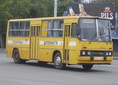 Busse, Bus Driver, Motor Car, Transportation, Public, Trucks, Vehicles, Military Tank, Car
