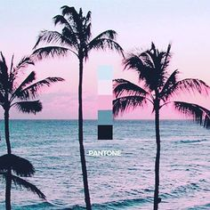 Where is your happy place?  For @seancomve it is this #RoseQuartz + #Serenity beach.  Please share your Pantone Studio app inspiration shots using the #pantonestudio for a chance to inspire others and be featured on our page. #pantone #beach #vibes