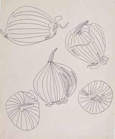 Andy Warhol - Five Views of an Onion, Ballpoint on Manila paper. The Andy Warhol Museum, P… (With images) Simple Line Drawings, Cool Drawings, Onion Drawing, Andy Warhol Drawings, Contour Line Drawing, Form Drawing, Andy Warhol Museum, Observational Drawing, Continuous Line Drawing