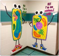 Animal and plant cell figures. LOVE these!