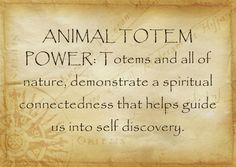 ANIMAL TOTEM POWER from Coralie & David's Pinterist Board. Collective Nouns, This Is Your Life, Own Quotes, Life Quotes, Quotes App, Music Quotes, Famous Quotes, Self Discipline, Spirit Guides