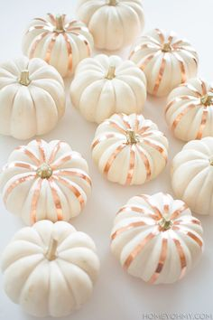 copper striped white pumpkins