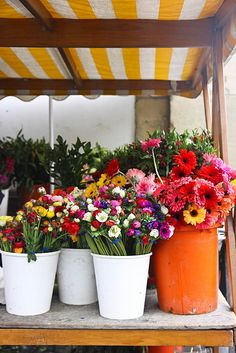 Country market flowers