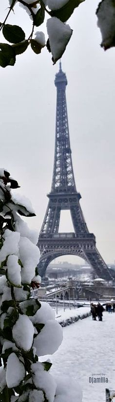 Eiffel Tower in winter