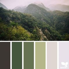 Color Collage ❤ liked on Polyvore featuring backgrounds, colors, design seeds, fillers and green