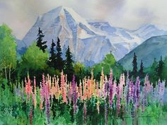 """Robson and Wild Lupine in Robson Valley"""" by my Canadian cousin Gregg Johnson Watercolor Landscape, Landscape Art, Watercolor Flowers, Landscape Paintings, Watercolor Paintings, Watercolours, Watercolor Painting Techniques, Painting & Drawing, Watercolor Tips"""