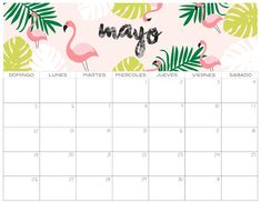 May 2020 Calendar With Holidays: Get May 2020 Holidays Calendar Template and know the local, national, federal and bank holidays of May Month Calendar May, Cute Calendar, Holiday Calendar, Print Calendar, Monthly Calendars, 2020 Calendar Template, Calendar Printable, Planner Sheets, Birthday Dates
