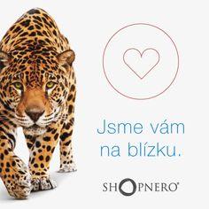 Jsme vám pořád na blízku. Po zhotovení webu nebo e-shopu s námi spolupráce nekončí, protože můžete využít spolupráce s agenturou sabanero.cz, která za velmi příznivou cenu nahradí celé marketingové oddělení. Pokud této možnosti využijete, záleží ale jen čistě na vás. :-) https://www.shopnero.cz/