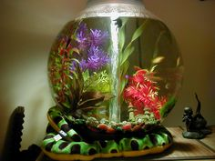 Awesome Fist Tank Decor ~ http://www.lookmyhomes.com/fish-tank-decor-ideas/