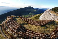 Sylvain Meyer - pine cone land art