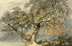 off Hand made oil painting reproduction of A Great Tree, one of the most famous paintings by Joseph Mallord William Turner. The watercolor A Great Tree was painted in 1796 by Joseph Mallord William Turner, and it shows. Joseph Mallord William Turner, Framed Art Prints, Painting Prints, Canvas Prints, Oil Paintings, Vintage Paintings, Art Romantique, English Artists, Covent Garden