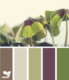 purples Color palettes ~ Maybe for living room at the new house                                                                                                                                                     More                                                                                                                                                                                 More