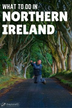 The Dark Hedges, Northern Ireland | The Planet D: Adventure Travel Blog