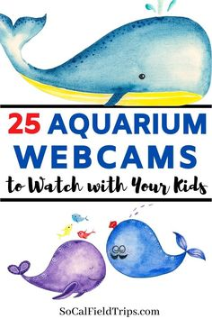 sealife activities for toddlers Are you teaching a unit about the ocean Check out this list 25 Aquarium Webcams from some of the best aquariums from around the world to compliment your lesson plans! Home Learning, Fun Learning, Learning Activities, Toddler Learning, Educational Websites, Home Schooling, Teaching Science, Virtual Field Trips, Toddler Activities