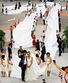 longest-wedding-train, unity