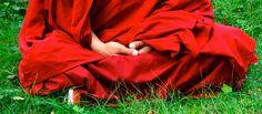 Le lama tibétainPhakyab Rinpoché affirme avoir sauvé sa jambe de l'amputation en se livrant corps et âme à la méditation. Alors que les médecins ne lui laissaient aucun espoir, il s'est astreint à une véritable retraite thérapeutique, couronnée de succès. Le psychanalyste Olivier Douvillel'a rencontré. S'il n'explique pas cette incroyable...