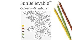 Color Me Happy: SunBelievable™ Paint-by-Number Project - perfect for kids and adults! Easy To Grow Flowers, Growing Flowers, Color By Numbers, Paint By Number, Brown Eyed Girls, Yellow And Brown, Pretty Pictures, Colored Pencils, Art Projects