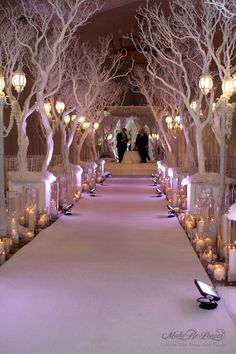 Winter Wonderland Wedding Decorations: I would love to have these trees at my wedding, why cherry blossom wedding why! my-vintage-pink-wedding Tree Wedding, Christmas Wedding, Wedding Flowers, Wedding Day, Wedding Colors, Branches Wedding, Wedding White, Elegant Wedding, Church Wedding