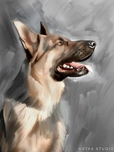 GERMAN SHEPHERD dog original art painting CANVAS GICLEE PRINT (Large)
