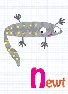 newt - Newton