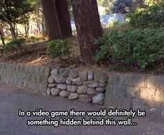 In Every Gamer Mind