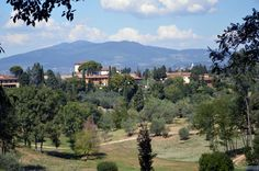 Toscana Resort,Castelfalfi,Italien,Wein,Toskana,Landgut,Feinschmecker,Bergdörfer, Zypressenallee,Florenz,Pisa,Siena, Kultur, Kunst, Medici,