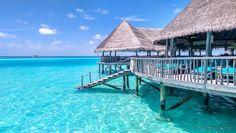 Gili Lankanfushi - Barefoot paradise in the Maldives Gili Lankanfushi, 5 Star Resorts, Holiday Places, Maldives, Best Hotels, Paradise, Scenery, Around The Worlds, Ocean