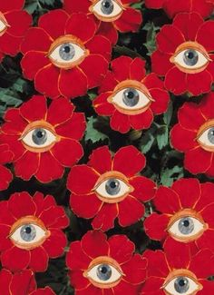 Eyeball flowers More painting trippy easy Grow the Classic Marigold Plant Wow Art, Psychedelic Art, Textures Patterns, Print Patterns, Wall Collage, Art Inspo, Art Photography, Illustration Art, Artsy