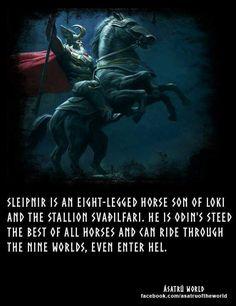 Odins steed                                                       …