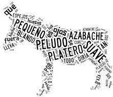 Poema Visual, Word Express, Blogging, Centenario, Word Pictures, More Than Words, Book Quotes, Decir No, Spanish