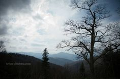 Trees silhouetted against a cloudy sky at Mount Pisgah on Blue Ridge Parkway near Asheville, North Carolina. #mountpisgah #silhouette #blueridgeparkway #asheville #nc
