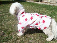 kway raincoats - Bijou Dog Fashions