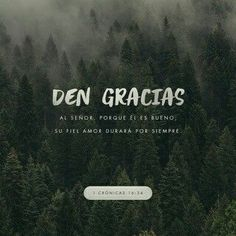 1 Chronicles Give thanks to the LORD, for he is good! His faithful love endures forever. Scripture Verses, Bible Verses Quotes, Bible Scriptures, 1 Chronicles 16 34, Bible Love, Bible Prayers, Daily Bible, Daily Word, Favorite Bible Verses