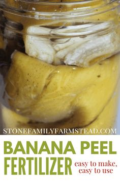 a great zero-waste idea for adding nutrients into your garden. Banana peel fertilizer takes less 5 minutes to prepare, and is ready for your potassium loving plants within a week. peel fertilizer waste for banana peels plant fertilizer Pesticides For Plants, Natural Pesticides, Fertilizer For Plants, Succulent Hanging Planter, Hanging Planters, Organic Gardening, Gardening Tips, Flower Bed Designs, Banana Benefits