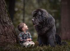 _bambini-piccoli-cani-grandi__008