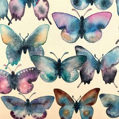 Butterflies are all done! Each one is unique but each one uses lunar blue as it's starting point. 🦋 .swipe left for close ups! . #butterflies #butterfly #butterflyart #butterflypattern #watercolor #danielsmith #danielsmithwatercolors #lunarblue #watercolorart #watercolour #commissionedart #ohwowyes #makeartdaily #makeart #gowiththeflow #etsyartist #doitfortheprocess #makersgonnamake