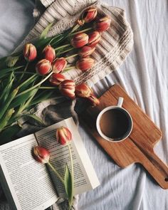 bed, tulips, and beautiful image