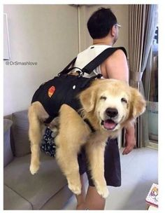 Just packing the essentials