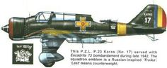 Romanian air force P.Z.L. P 23 Karas, 1942, pin by Paolo Marzioli